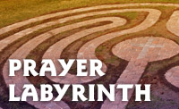 FPC_buttons_LABYRINTH